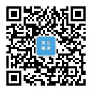 中国兽医网